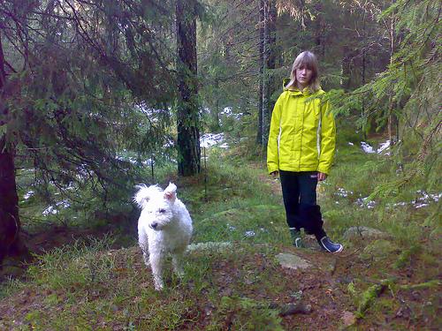 Muffin och Nelly i skogen