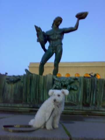 Pumi hos Poseidon
