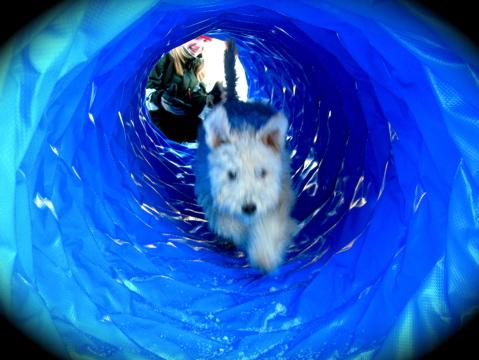 jihaa! en egen tunnel!